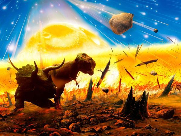 mass-extinction_1077_600x450.jpg